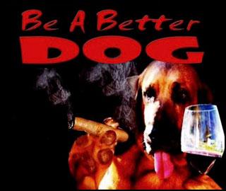 BetterDog-icon